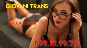 trans linea erotica
